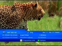 NSS 6 at 95.0 e-Indian footprint-packet Dish TV-12 647 V National Geographic Channel HD Asia-01