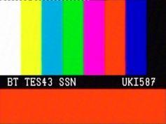 British Telecom TESTCARD 22W