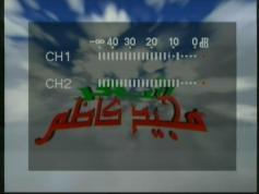 feeds Beladii 11 014 MHz V pol Middle East beam INT 902 62E 10